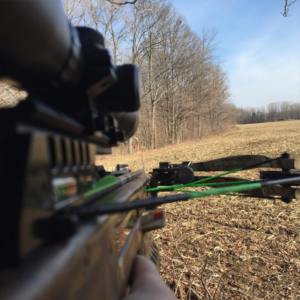 PSE Fang LT Compound Crossbow